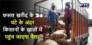 Wheat MSP Haryana