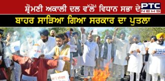 Budget Session : SAD effigy of Punjab Government burn outside Punjab Vidhan Sabha