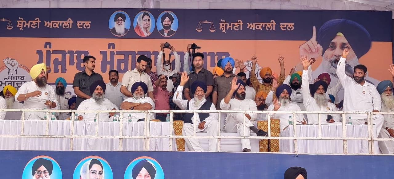Punjab Mangda Jawaab: Shiromani Akali Dal leader Bikram Singh Majithia in Khem Karan, slammed Captain Amarinder Singh.