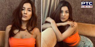 Shehnaaz Gill flaunts her new 'adorable' avatar [See Photos]