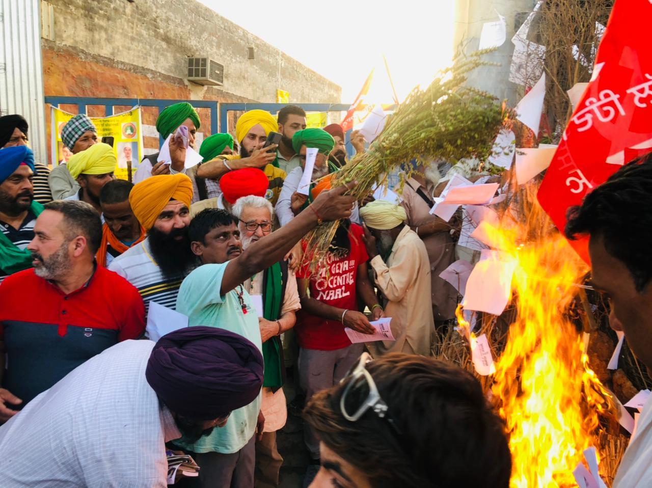 Farmers Holi: Farmers burnt copies of farm laws on 'Holika Dahan'. Rakesh Tikait said they will celebrate Holi at border.
