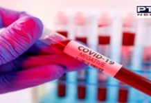Coronavirus Punjab Updates : 3915 new Coronavirus patients in Punjab today ,51 deaths
