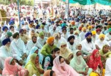 SAD holds dharnas in all constituencies against Congress and AAP