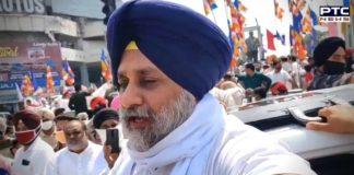 If SAD forms govt in 2022, Deputy CM will be from Dalit bhaichara: Sukhbir Singh Badal