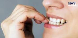 Leave the habit of chewing the nails today, it can have many terrible consequences