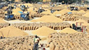 wheat procurement gets Underway from April 10, amid COVID-19 pandemic