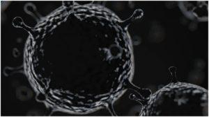 Black fungus : Elderly death due to black fungus after Covid-19 in Sri Muktsar Sahib
