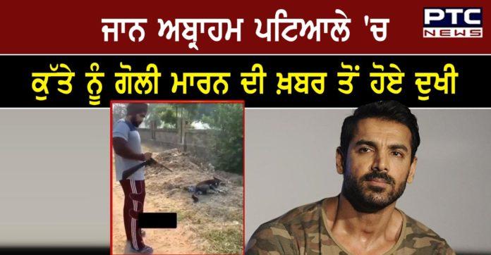 John Abraham Expresses Angst After Man Kills Stray Dog With Rifle