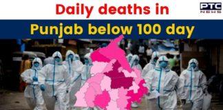 Coronavirus: Punjab records 99 new COVID-19 deaths in last 24 hours