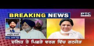Shiromani Akali Dal and Bahujan Samaj Party form alliance: Sources