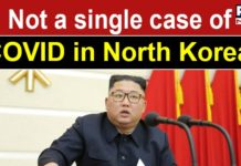 'Yet to find a single case of coronavirus': North Korea to WHO