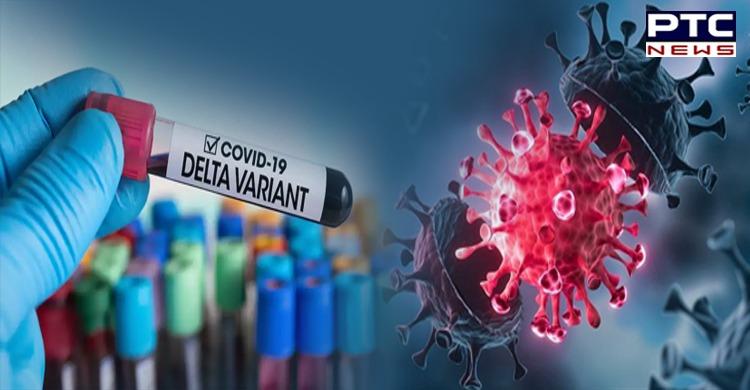 Coronavirus: India has 48 cases of Delta Plus variant, says Centre