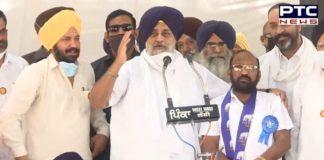 PSPCL chairman reveals how cuts are govt's revenge against farmers: Sukhbir Singh Badal