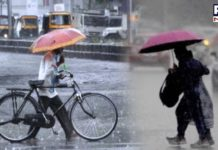 Punjab, Haryana, and Delhi likely to see monsoon rain in next 24 hours