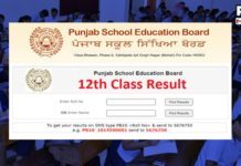 Punjab Board PSEB Class 12 Result 2021 available. Here's how to check