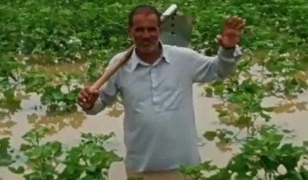 Farmers' crops destroyed due to incessant rains, demand for compensation
