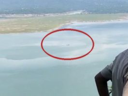 Pathankot Army Helicopter crash: