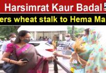 Watch: Harsimrat Kaur Badal offers wheat stalk to BJP MP Hema Malini