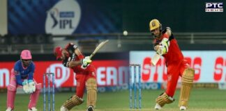 IPL 2021: Glenn Maxwell's fifty propels RCB to win over Rajasthan Royals