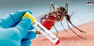 Delhi logs 139 cases of dengue in October so far