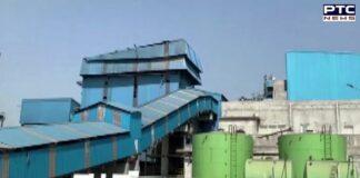 Punjab: Ferozpur's biomass power plant generating electricity using stubble