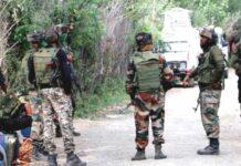 Jammu and Kashmir: 11 terrorists killed in 8 encounters in J-K, says IGP Kashmir