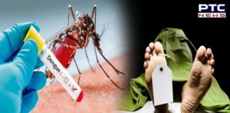 Delhi reports first death due to dengue this year