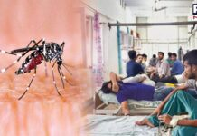 Delhi hospitals witness surge in dengue cases